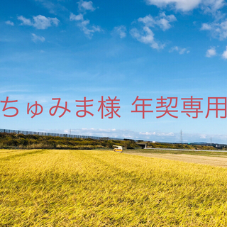 【ちゅみま様 年契専用】平成30年度あきたこまち中粒米25kg②精米130kg(米/穀物)