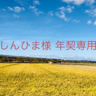 【しんひま様 年契専用】平成30年産こまち中粒米25kg⑥ひとめぼれ25kg⑩(米/穀物)