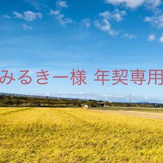 【みるきー様 年契専用】平成30年度あきたこまち精米25Kg×6(米/穀物)