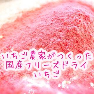 【いちご農家がつくった】国産フリーズドライいちご(粉末・10g)(フルーツ)