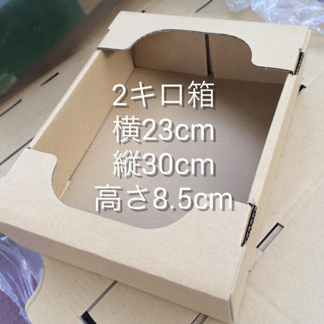 おわんこ先生 夏目友人帳 断捨離中様 専用 食品/飲料/酒の食品(野菜)の商品写真