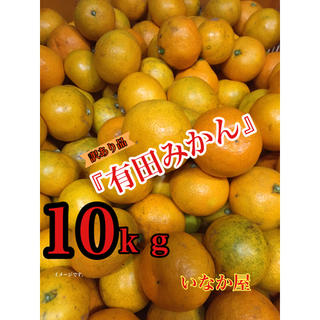 オーダー品 有田みかん訳あり品40kg(フルーツ)