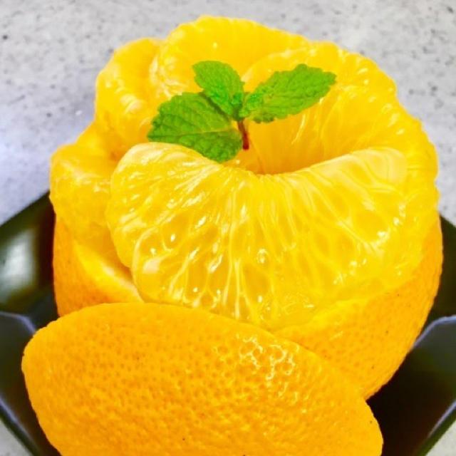 はじける食感! 八朔 5kg 食品/飲料/酒の食品(フルーツ)の商品写真