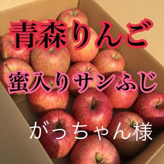 りんご 専用出品(フルーツ)