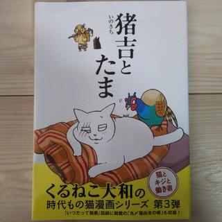 ゲントウシャ(幻冬舎)の猪吉とたま くるねこ大和 時代もの猫漫画シリーズ第3弾(その他)