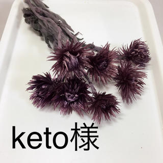 keto様専用ページ(ドライフラワー)