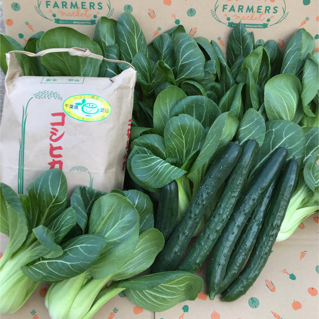 コシヒカリ&キュウリ&チンゲン菜 食品/飲料/酒の食品(野菜)の商品写真