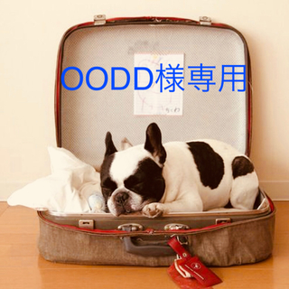 OODD様専用(ダイエット食品)