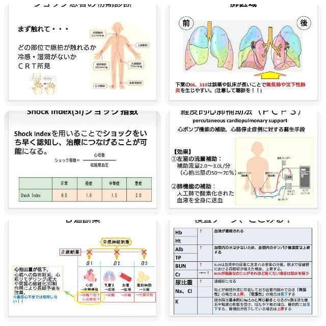 フィジカルアセスメント★資料 エンタメ/ホビーの本(健康/医学)の商品写真