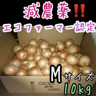 北海道産 減農薬 玉ねぎ Mサイズ 10キロ(野菜)