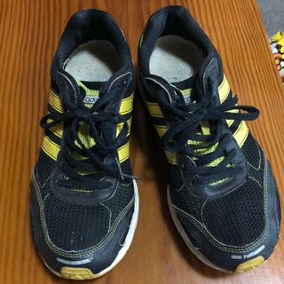 アディダス(adidas)のadidas 25cmランニングシューズ(adizero)(ランニング/ジョギング)