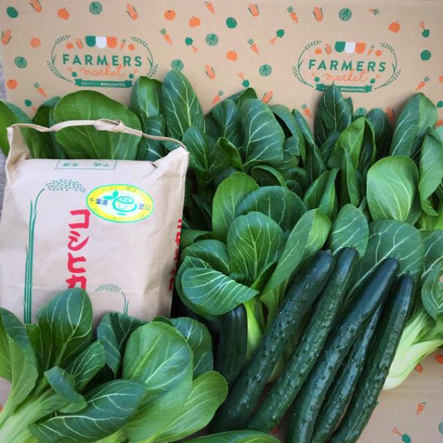 マサミ様専用ページ 食品/飲料/酒の食品(野菜)の商品写真