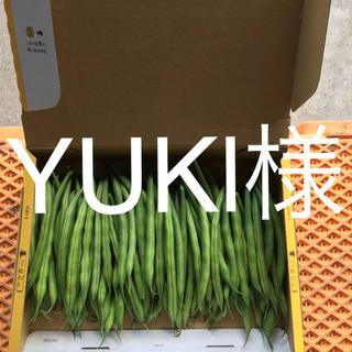 鹿児島産サヤインゲン  500g^_^(野菜)