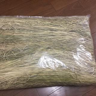 ウサギさんも大好き♪天日干し稲わら(約2kg入り)(小動物)