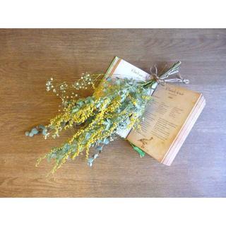 【ふわふわしてきた春待ちミモザ】ミモザとかすみ草のスワッグ(ドライフラワー)