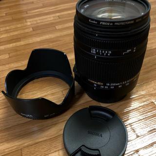 シグマ(SIGMA)のれびなす様18-250mm F3.5-6.3 DC MACRO OS HSM(レンズ(ズーム))
