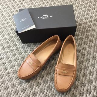 1256461c40e8 4ページ目 - コーチ(COACH) 靴 ローファー/革靴(レディース)の通販 200点 ...