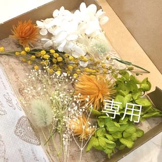 maaa_s様専用    ドライフラワー花材♡*.デイジーオレンジセット①(ドライフラワー)