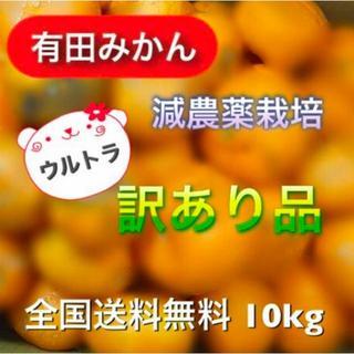 まあ♡様専用【有田みかん】減農薬《特別企画》モリ・カケ・スパ・ブラックボックス(フルーツ)