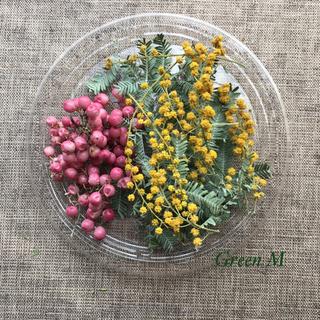 春色ミモザとペッパーベリーのミニセット☆送料無料 商品40(ドライフラワー)