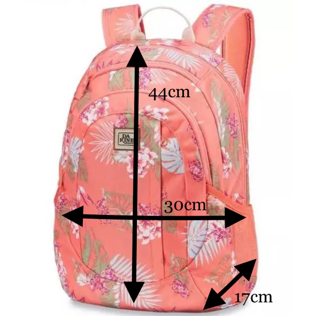 Dakine(ダカイン)の送料込【未使用 新品】Dakine ダカイン 20L バックパック リュック  レディースのバッグ(リュック/バックパック)の商品写真