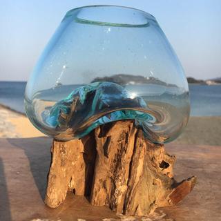 流木ガラスMN1 オブジェ 花瓶 多肉植物 金魚鉢 バリ島アート作品 テラリウム(彫刻/オブジェ)
