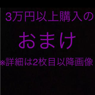 コロニル(Collonil)の3万円以上購入のおまけ(その他)