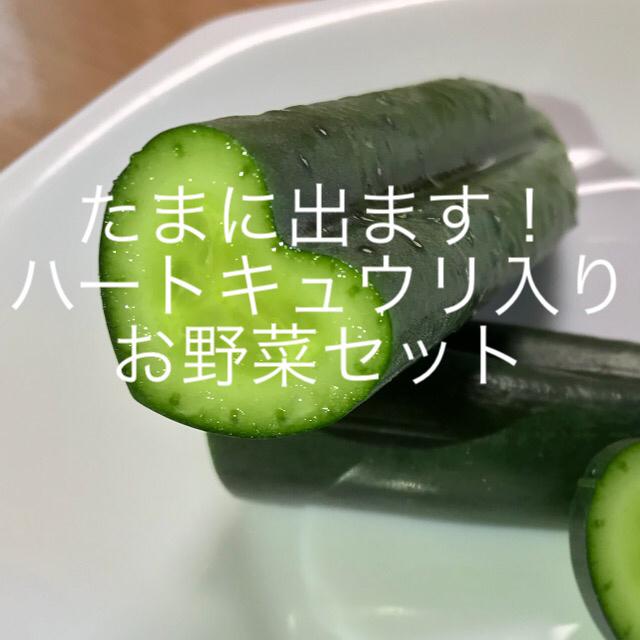 お野菜セット 食品/飲料/酒の食品(野菜)の商品写真
