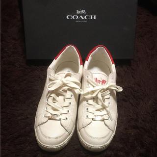 コーチ(COACH)のcoach スニーカー  レディース(スニーカー)