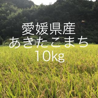 あきたこまち 愛媛県産 10㎏(米/穀物)