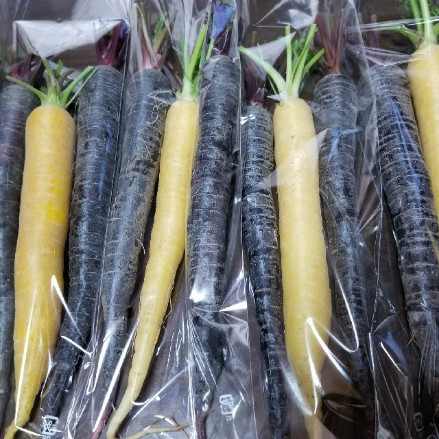 S様専用彩り野菜 食品/飲料/酒の食品(野菜)の商品写真