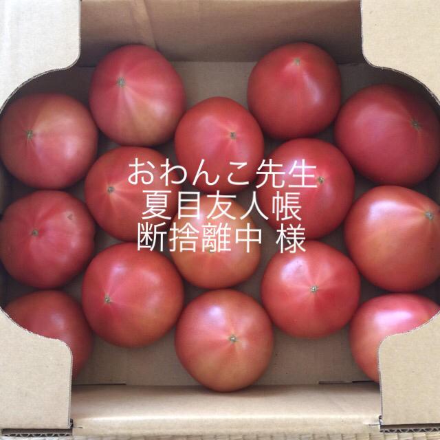 おわんこ先生夏目友人帳断捨離中様専用 食品/飲料/酒の食品(野菜)の商品写真