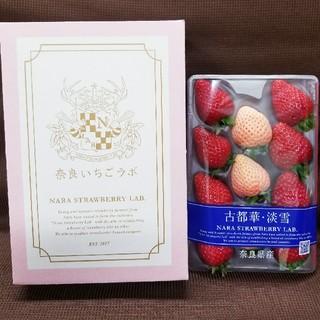 イチゴ 奈良いちごラボ(フルーツ)