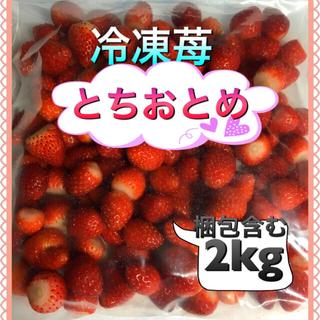 冷凍 いちご とちおとめ 2kg 弱(フルーツ)