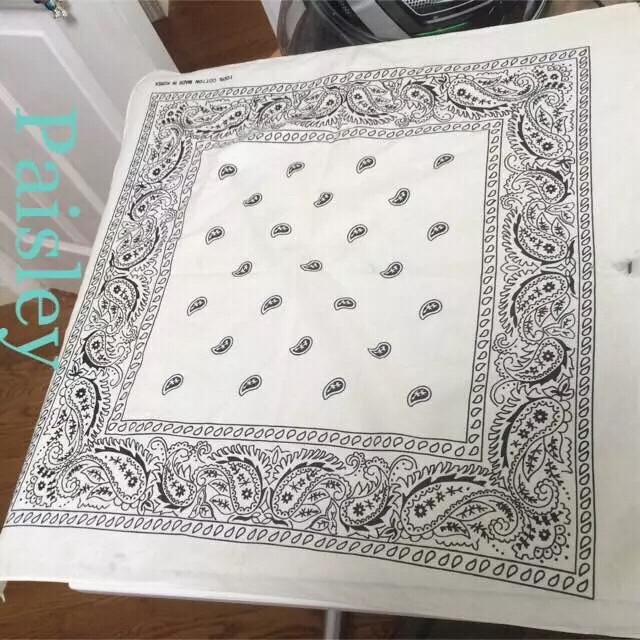 バンダナ ペイズリー エンタメ/ホビーのCD(R&B/ソウル)の商品写真