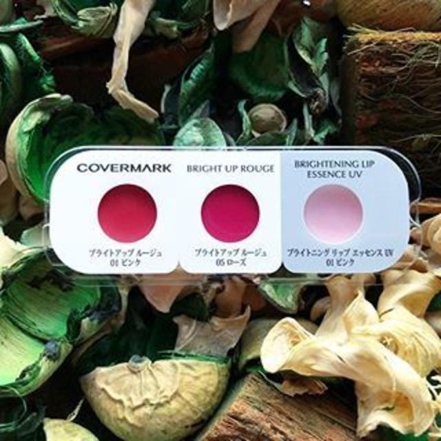 COVERMARK(カバーマーク)の702 4点セット ダイエットリング ポーラ カバーマーク コスメ/美容のキット/セット(サンプル/トライアルキット)の商品写真