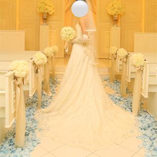 ヴェラウォン(Vera Wang)のウェディングドレス インポートドレス イタリア  シルク レース (ウェディングドレス)
