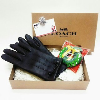 コーチ(COACH)のCOACH レディース手袋(手袋)