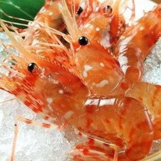 ☆けんちゃんが漁をする(*•̀ᴗ•́*)و ̑̑日本で1番美味しい海老☆(魚介)