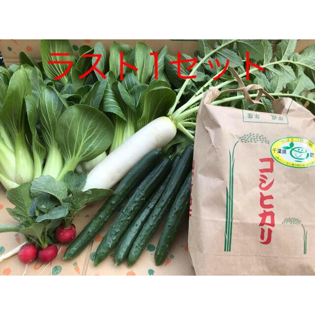 コシヒカリとお野菜セット 食品/飲料/酒の食品(野菜)の商品写真