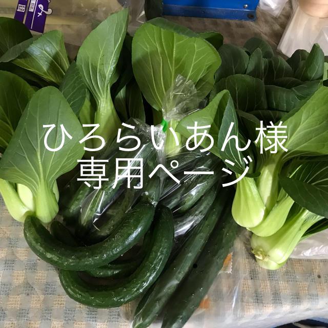 ひろらいあん様専用 食品/飲料/酒の食品(野菜)の商品写真