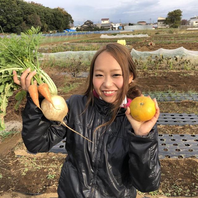 農薬・肥料不使用 野菜セットM「8〜10品」ラクマ特別版 食品/飲料/酒の食品(野菜)の商品写真
