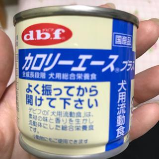 デビフ(dbf)のデビフ  カロリーエース プラス 犬用流動食 10缶セット(ペットフード)