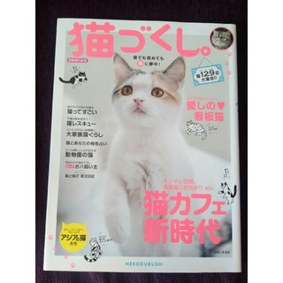 シュフトセイカツシャ(主婦と生活社)の別冊週刊女性 猫づくし。(その他)