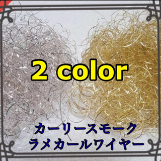 2color  シャンパン  シルバー    カーリースモーク(その他)
