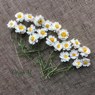 花かんざしドライフラワー20本セット✳︎✳︎送料無料(ドライフラワー)