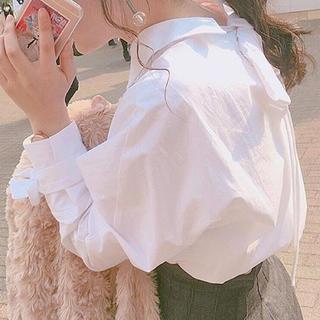 ザラ(ZARA)のZARA リボンシャツ(シャツ/ブラウス(長袖/七分))