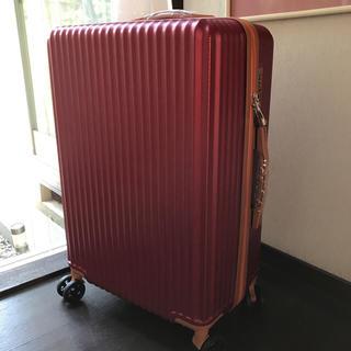 未使用✨4-7日泊スーツケース(旅行用品)