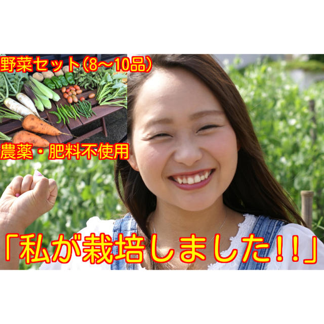 農薬・肥料不使用 野菜セットM 「8〜10品」 食品/飲料/酒の食品(野菜)の商品写真
