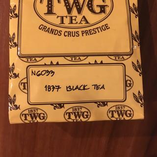 TWG  1837 BLACK TEA 50g(茶)